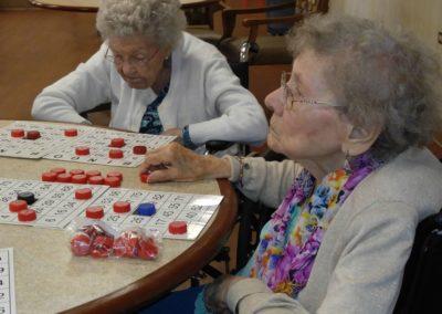 Bingo Fun