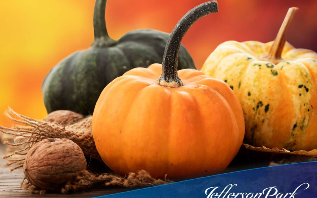 Halloween Activities for Seniors to Enjoy with Their Families